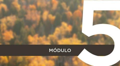 Módulo 5